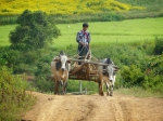 birmanie, myanmar